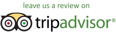 City Transfer on Tripadvisor